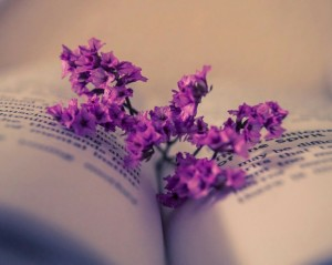 book-flowers-purple-vintage-Favim.com-2263820